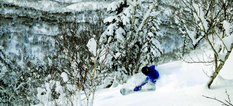The Envy of the World: SKI AREAS WITHIN METROPOLITAN SUBURBS IN ABUNDANCE